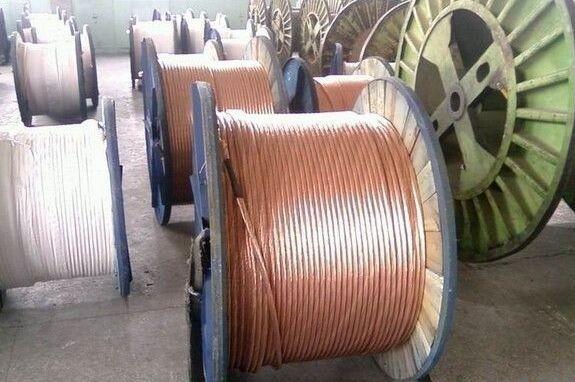 国电天邦铜镀钢绞线