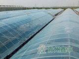 塑料棚膜加工,专业的大棚膜提供商,当属鑫丰塑料