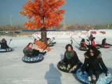 大型滑雪场雪地转转厂家直销冰上转转