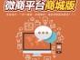 专业移动电商系统定制电商系统软件开发