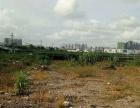 坦神南路 金斗大桥土地 400平米