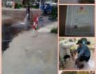 厦门湖里康乐一期 康乐二期疏通厕所(马桶),下水道