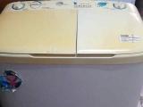 品牌小天鹅洗衣机