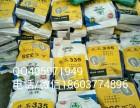 供应高产稳产抗病抗逆性强先玉335玉米种子