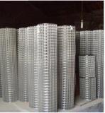 衡水镀锌电焊网价格范围 衡水电焊网