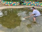 东莞松山湖可以野炊烧烤拓展的度假村农家乐基地