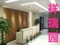 水贝植物租摆、办公室绿植 写字楼盆栽 绿植租摆