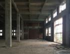 出租新建6万平标准厂房底层6000平层高7米