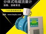 上海佰质仪器仪表有限公司 分体式电磁流量计