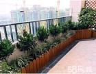 绿植租赁办公室植物租摆绿植盆栽出售绿化墙仿真绿化墙