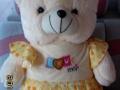 全新可爱穿裙子的熊娃娃