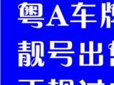粤A粤B公司车牌转让,粤B公司车牌出租,专业正规