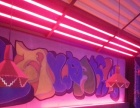 海南日出手绘工作室 墙体绘画 手绘墙 3D 手绘T