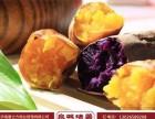 邢台泉城烤薯加盟店 泉城烤薯加盟商