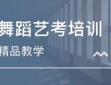 重庆舞蹈学校 舞蹈艺考难吗
