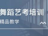 重庆舞蹈学校 舞蹈艺考难