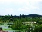 新浦遵义四中新桂苑住房出租用于办公(湿地公园和蔷薇国际