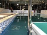 兰州盎然宠物狗狗学校室内游泳馆