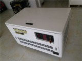 TOTO25 钥匙启动25kw汽油发电机