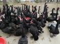 鳄鱼苗的价格黑天鹅出售鸵鸟孔雀多少钱