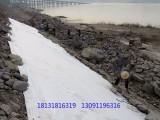 固体废弃物填埋专用防渗HDPE土工膜 600g长丝土工布