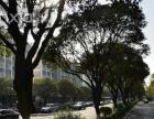 禾祥西路 金丰花园 二市BRT附近 居家两房 拎包入住