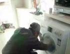 洁百氏 专业家电清洗及家庭保洁 开荒保 地暖清洗