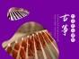 街道口古筝培训班,武汉野美艺术培训中心较负责 较专业!