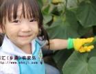 上海农家乐一日游推荐 游滴水湖看海 采西瓜摘葡萄掰玉米