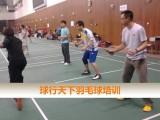 球行天下春季复兴门成人羽毛球培训