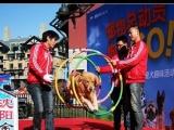 大連專業訓犬十二年品牌金牌寵物全國連鎖