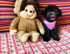 福州出售纯种泰迪贵宾犬泰迪幼犬娃娃脸大眼睛茶杯犬