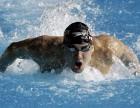 囯家级游泳教为你量身打造私人定制游泳课程