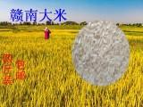正宗赣南晚稻优质大米,口感很好价格实惠