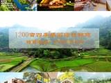 简阳1200亩四季果园项目招商欢迎志同道合者共同致富