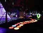 鲸鱼岛灯光展地板钢琴城市心跳铁塔彩色跑发光秋千厂家一手资源