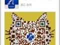 兴牧动物医院在台州动物医疗行业十几年的技术经验