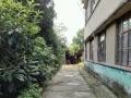 荆州区川店镇 其他 10000平米