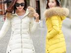 2015新款A版大码修身秋冬女式羽绒棉服 中长款棉衣女棉袄加厚外套