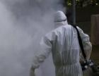 职业灭鼠、防鼠,白蚁灭治、预防,各种环境虫害防制。