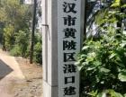 黄陂区滠口建兵养殖厂整体出租或单租均可