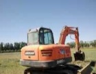 斗山 DX80 挖掘机         (急售挖掘机)