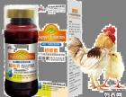 超维素 带领中国液态维生素进入国际水平