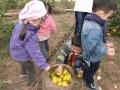 上海滴水湖周边农家乐推荐 采桔子摘葡萄 自助烧烤 钓大鱼
