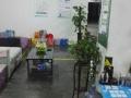 广潍驾校资深老驾校自己的练车场 考试场地
