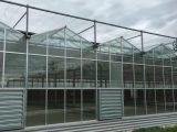 绵阳农业技术咨询福建口碑好的玻璃大棚