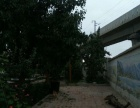 深沟桥 范家坪 院子带2层楼房1500平米