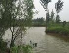 出租济阳北池塘土地