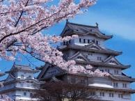 传统文化 石家庄到日本双飞7日游