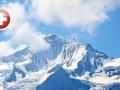 瑞士商务签证申请、个人旅游签证申请、探亲访友签证申请、含陪签